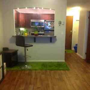 1 Bedroom Condo for Rent - Furnished