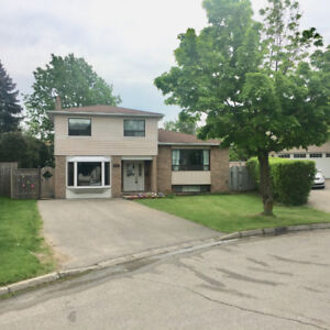SELLING UPDATED HOUSE FAST NOT ON MLS YET