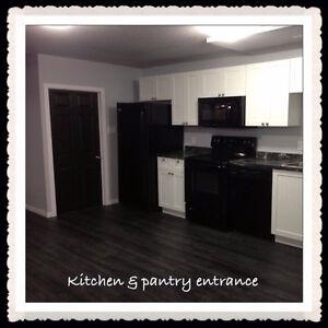 Beautiful 2 Bedroom Basement Suite in Vermilion Lakeland End May