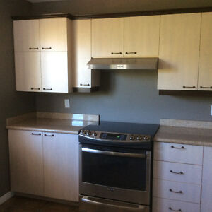 Comptoir de granite et armoires ( prix de débarras )