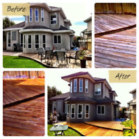 *Book Your Spring/ Summer Painting Project Today*