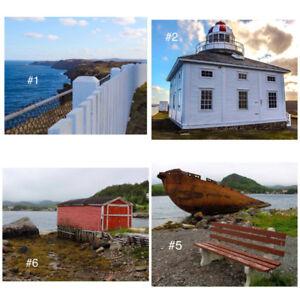 Newfoundland prints