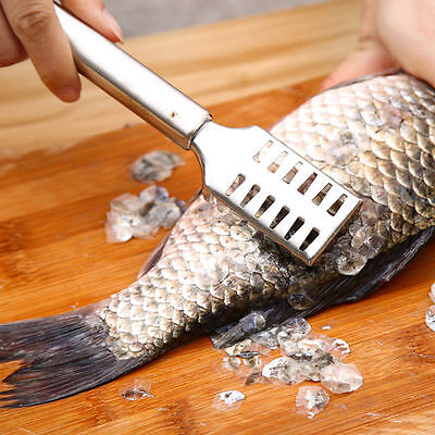 Stainless Steel Fish Scale Remover Cleaner Scaler Scraper Kitchen PI