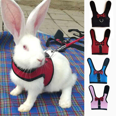 Bunny Vest (Rabbit Bunny Pet Mesh Soft Harness With Leash Small Animal Vest Lead for)
