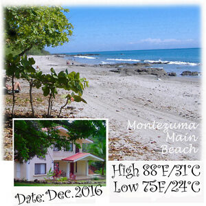 Spacious Tropical Pool Apt (Monthly, Weekly, Daily) Montezuma CR