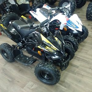 2015 GIO Manteray 500watt Electric ATV