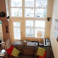 BANFF- 2Bedrooms Avail. in Awesome Mountain Condo - Furnished