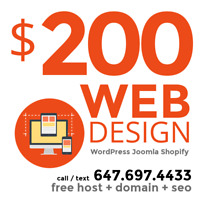 RELIABLE Fast Delivery EXPERT WEB DESIGN  ----- Great Examples