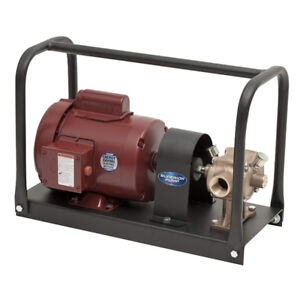 CHEMICAL Transfer Pump, 1/2 HP Kit with BP21X Bronze Pump