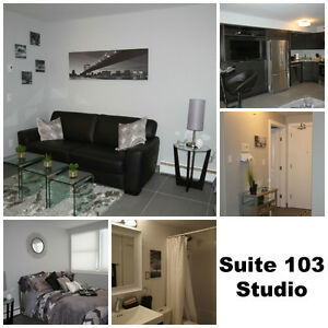DOWNTOWN STUDIO SUITE - FULLY FURNISHED