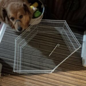 small pet play pen