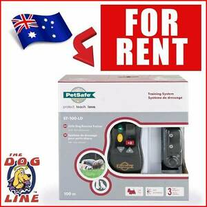 Hire Dog Training Collar - Small Dog remote Training Collar Yokine Stirling Area Preview
