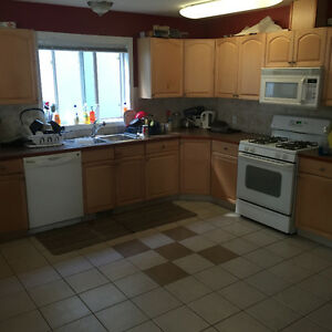 NICE LARGE ROOMS IN BASEMENT FOR 450.00