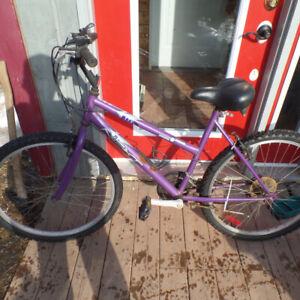 Ladys  bicycle