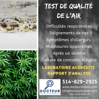Test air moisissures laboratoire
