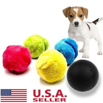 5Pcs Magic Automatic Roller Ball Toy Roller Ball Magic Ball Dog Cat Pet Toys US