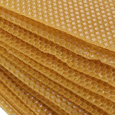 30pcs Honeycomb Comb Foundation For Apis Mellifera Beehive Wax Frames Beekeeping