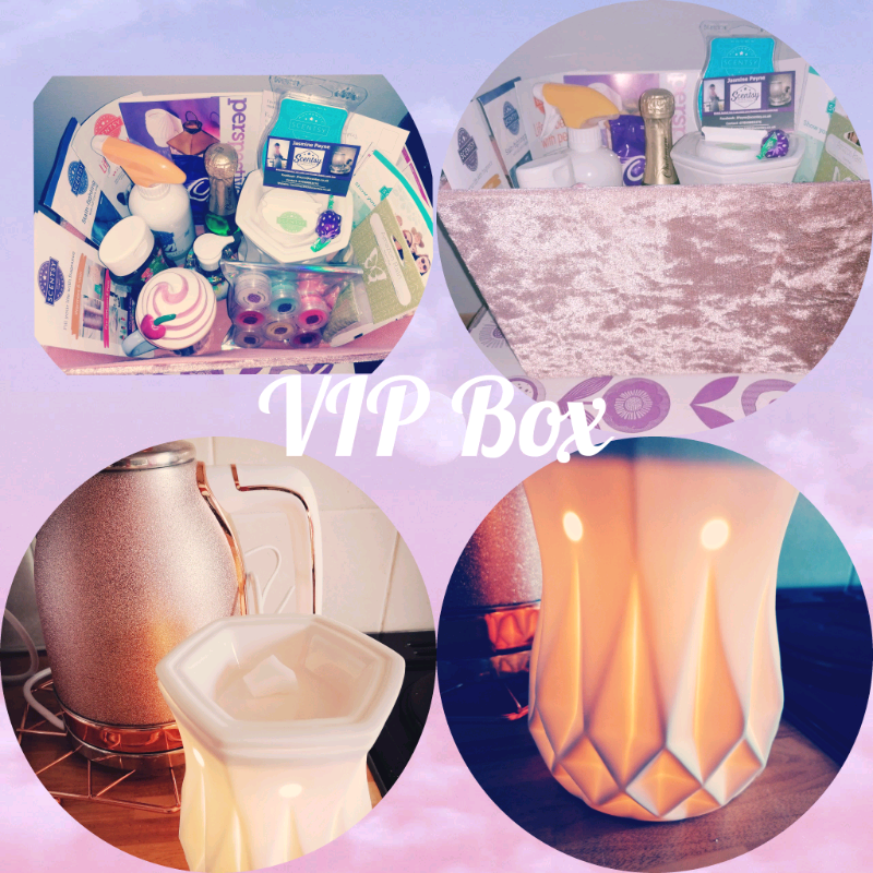FREE VIP borrow box ♥️