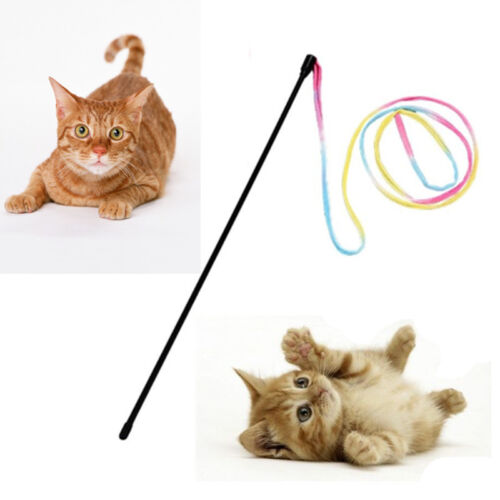 Cat Toy Plastic Stick Kitten Pet Dog Teaser Funny Wand Interactive Colorful Wire