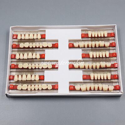 3 Sets Dental False Denture Acrylic Resin Teeth Upper Lower Shade Full Mouth A2