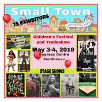 Small Town-Children's Festival and Tradeshow