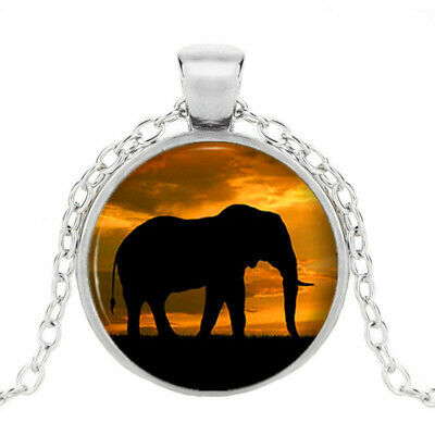 Elephant Jewelry Art Photo Cabochon Glass Silver Pendant Chain Necklace Jewelry