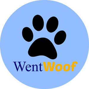 Dog Boarding and DayCare in Wentworth
