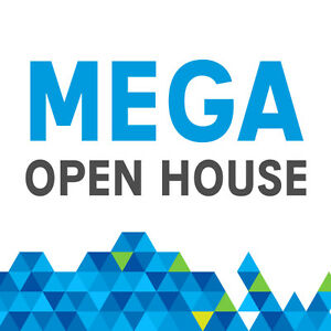 TODAY ***MEGA OPEN HOUSE SUNDAY IN HANMER  1-4PM