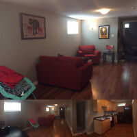 young Professional looking for roommate for SW basement Suite.