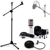 Professional Condenser Microphone Mic Studio Sound Recording w Boom Stand Filter