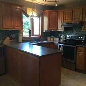 Get a great deal on a cabinet or counter in saskatoon for Kitchen cabinets kijiji