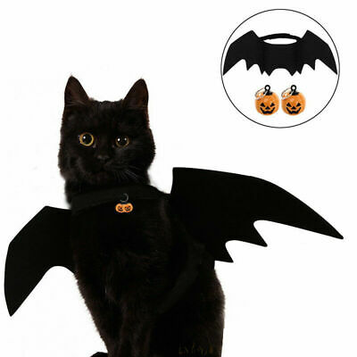 Halloween Cat Costume Suit Black Bat Wings Pumpkins Collar Bell for Pet Dog Cat