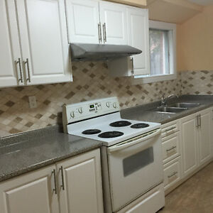 BEAUTIFUL 1 BEDROOM BSMT APRTMT FOR RENT -Sandalwood & Heartlake