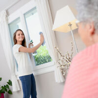 Cleaning for Seniors - $20.00/hour