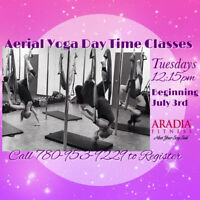 Aerial Yoga Trapeze Classes (6 weeks)