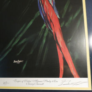 Signed Numbered Barry Barnett Tropic of Vedra Macaw Parrot Kitchener / Waterloo Kitchener Area image 4