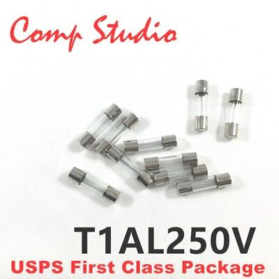 10Pcs Ceramic Tube Fuse Metal Axial Lead Slow Blow Type Fuse 5x20mm 250V//10A US