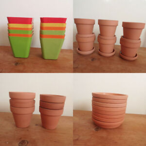 Assorted Bamboo & Clay Pots