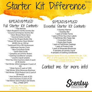 Great deals for Scentsy in January