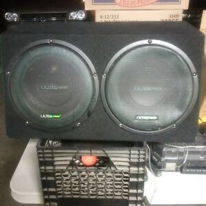 """double 10"""" Subwoofer"""