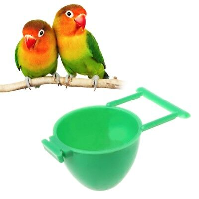 Bird Parrot Feeder Fruit Egg Container Holder Cage Hanging Pet Bird Supplies