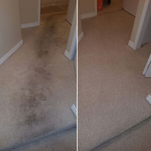 CARPET STEAM CLEANING - UPHOLSTERY -TILE AND GROUT Kitchener / Waterloo Kitchener Area image 10