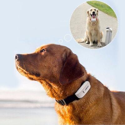 TKStart Pet Gps tracker TK909 Dog Cat collar Anti-lost Security Burglar Devices