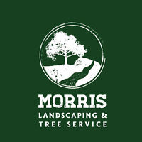 Arborist/Tree Service/Storm Clean Up/Tree Removal