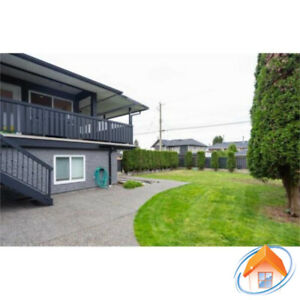 Burnaby North 2-bedroom basement suite for rent