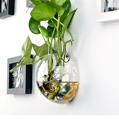 Hanging Glass Flower Planter Vase Terrarium Container Home Garden Ball Decor jd