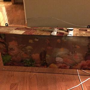 Aquarium light kijiji free classifieds in winnipeg for Electric fish tank