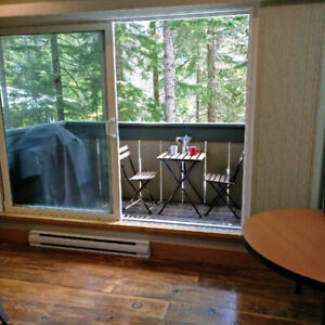 Forested Townhouse in a Great Location