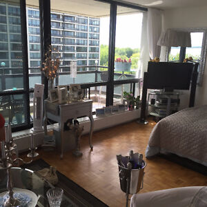 Gorgeous 500 sq ft loft with spectacular view
