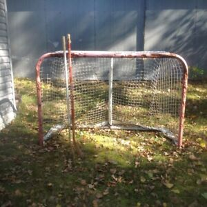 Hockey Net & Sticks